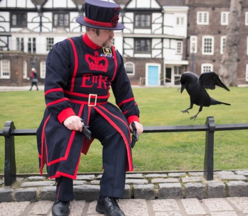 odd-job-raven-master-tower-of-london-spitalfieldslife-com