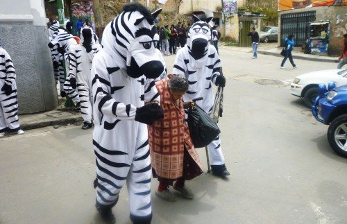odd-job-traffic-zebra-bolivia
