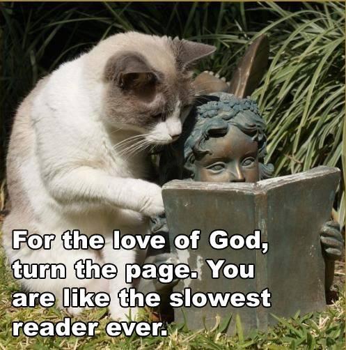 slow-reader