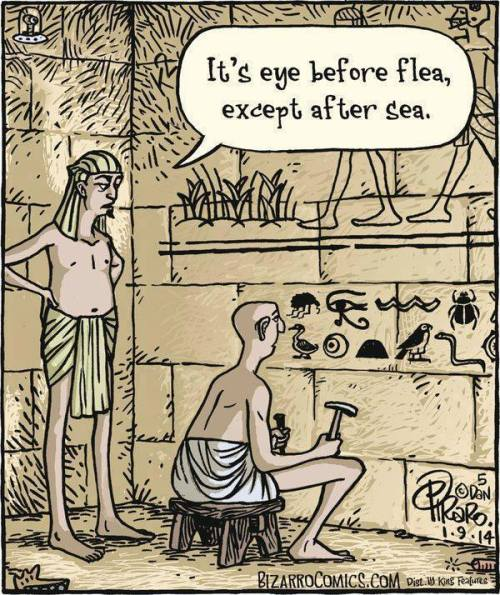 Eye Before Flea