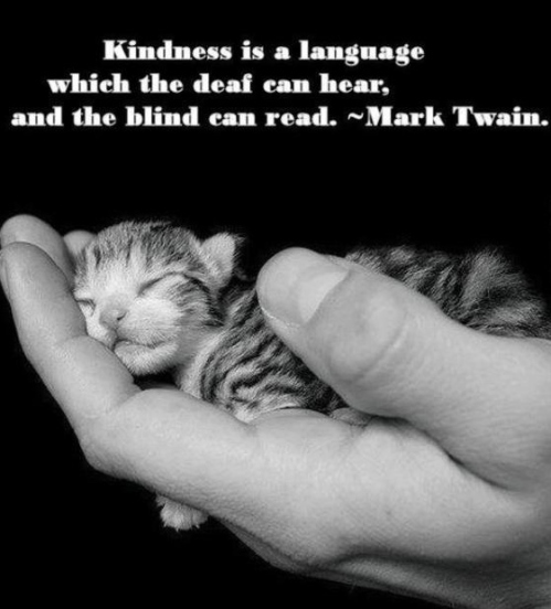 Mark Twain - Kindness is a Language, Deaf, Blind