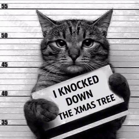 Knocked Down the Xmas Tree