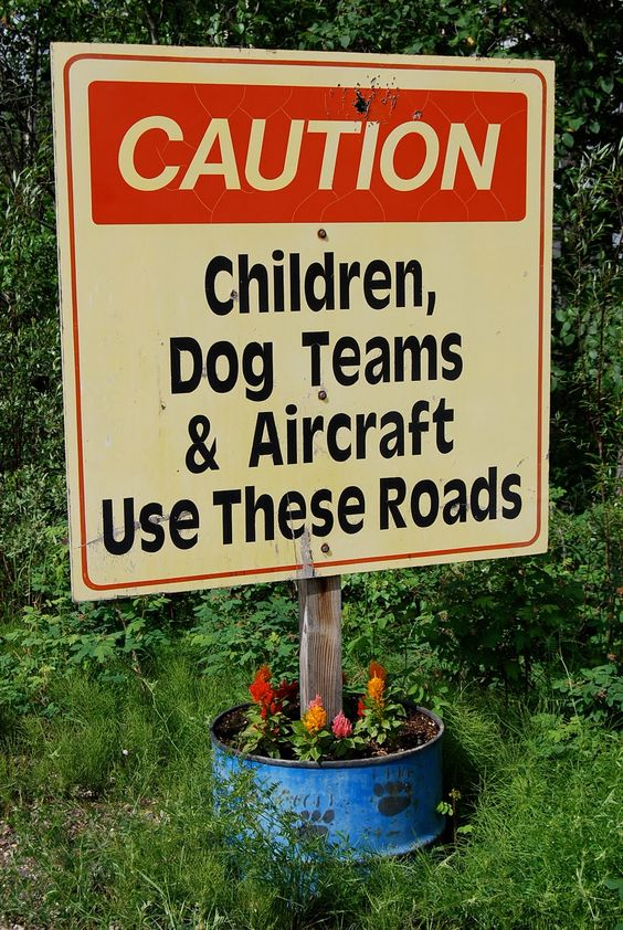 Children, Dog Teams & Aircraft Use these Roads