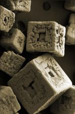 Salt - Grains of salt under electron microscope