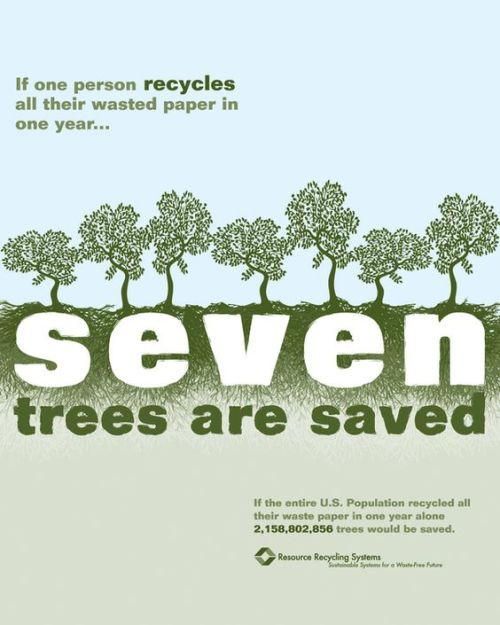 Trees Saved