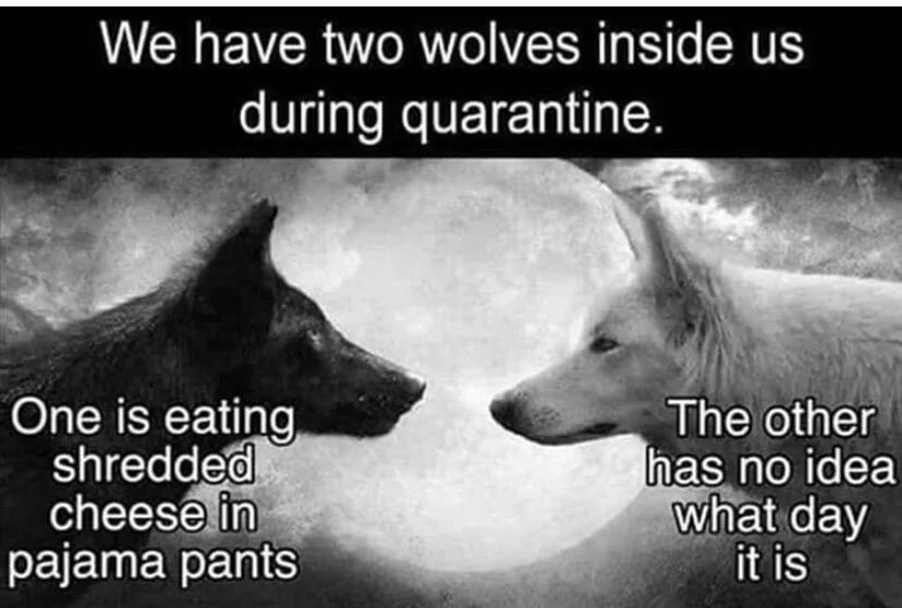Two Wolves, Quarantine